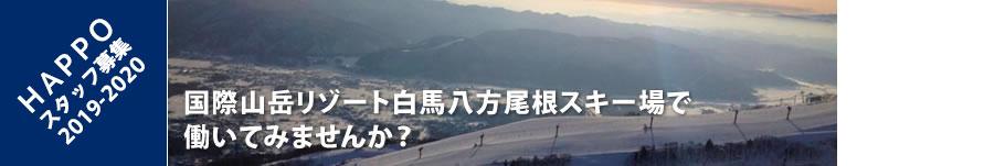 HAPPO スタッフ募集 2019-2020