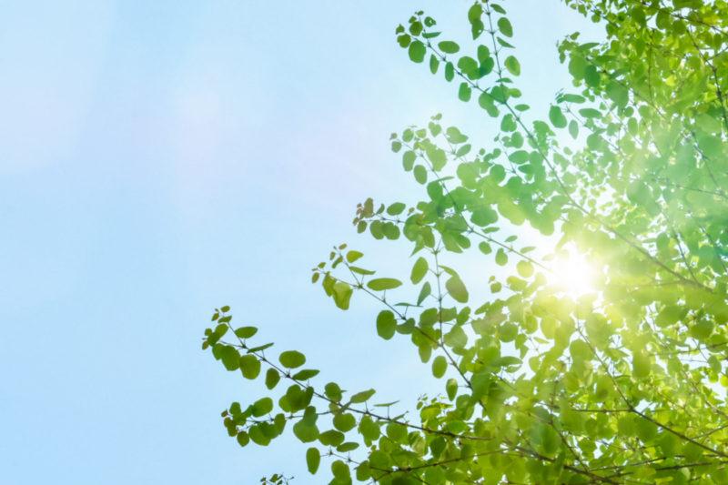 エネルギーの脱炭素化を目指します